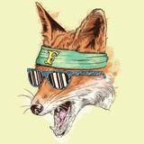 Fantastic Fox - Spring Mix 2012
