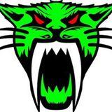 Bosscat Gforce