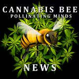 CBN096 2/22/15 – California's Top Cop Calls Cannabis 'Inevitable', Cannabis 'munchies' explained, Is