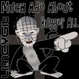 Much Ado About Bugger All - Dec 21 2015 - Best of 2015 pt1