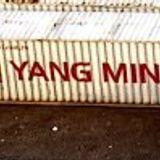 Ming Mu