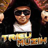 DJ TRIỆU MUZIK - 0337273111
