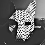 FoxArcher