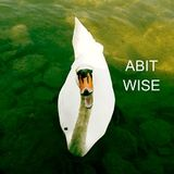 ABITWISE-SaturdayNightMixPart6@RadioCampus