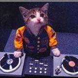 Steven Hardy aka DJ Pesty