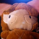 Prince(lion) from P&P