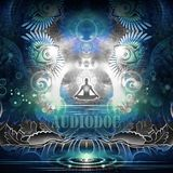 Audiodoc Project