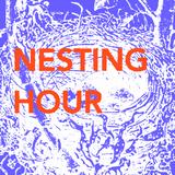 Nesting Hour
