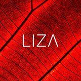L I Z A