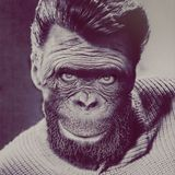 aNother_moNKey