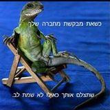 Limor Ashkenazi