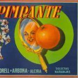Lady Pimpante