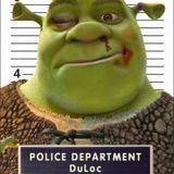 Shrek Facee