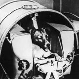 Laika 017 with safe radio s01e03