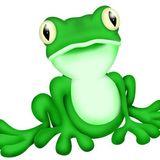 scatfrog