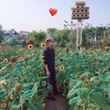 Nst Dj Thái Hoàng 2019