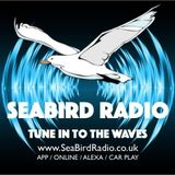 Richard Dix on SeaBird Radio