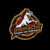 DJ OLEMACHO