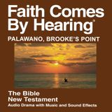Brooke's Point Palawano Bible