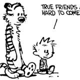 The_Hobbes