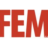 FEM_MAG