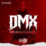 DJ DOC X