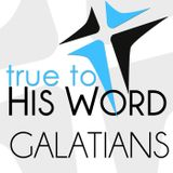 Book of Galatians - Verse by V