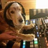 MLCGF DJ