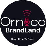 BrandLand Episode 1: The Internet of Everything, Mobile and Consumer Research