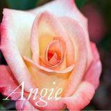 Angelica María Aguas