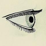 L.E. Evans