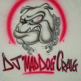 Studio 54 Tribute (DJ MadDog Craig)