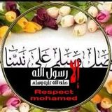 Mohamed Ahmed Shishtawy