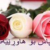 Yusf Amen