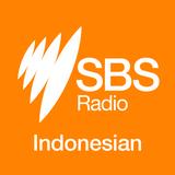 Forest fire in Kalimantan - Kebakaran Hutan dan Lahan di KalimantanSelatan