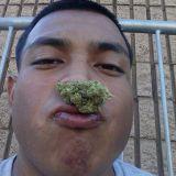 Manny Hdez