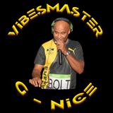 Vibesmaster G Nice