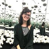 Megan Early