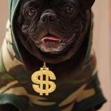 Yan Doggie