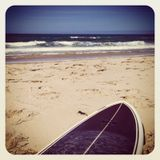 surfsider