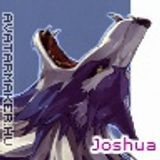 JoshuaBloodWoolf