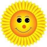 sunflower123