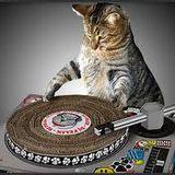 DJ Rid's Old Skool Mix