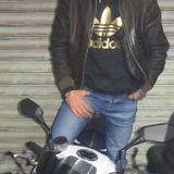 Melki Lotfi