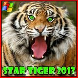 StarTiger63