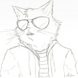 Slickkatt