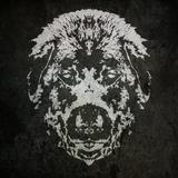 BeardogSoundsystem