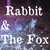 Rabbit & The Fox