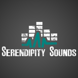 Serendipity Sounds Episode 2: Interviews with PUP and HAWK