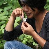 Sushma Mahon